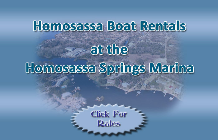 Homosassa Boat Rentals, boat rentals Homosassa, boat rentals Homosassa Springs, Boats for Rent in Homosassa, Pontoon boats for rent, Homosassa Springs boat rentals, boat rental Citrus County, Homosassa Florida, Homosassa Springs Florida